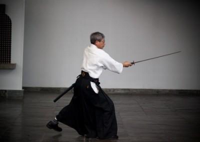 aikido624
